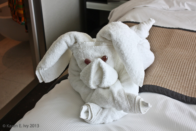 Towel rabbit - I think - in our cabin.  Our steward really seemed to enjoy making these.