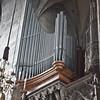 Upper organ