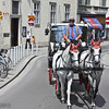 Horse-drawn tourist carriage, in traffic