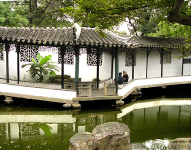 Brookside Chat - Humble Administrator's Garden ~ Suzhou