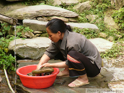 Shoe Cleaner ~ Longsheng