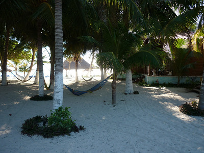 Hammocks in the trees between the bungalows.