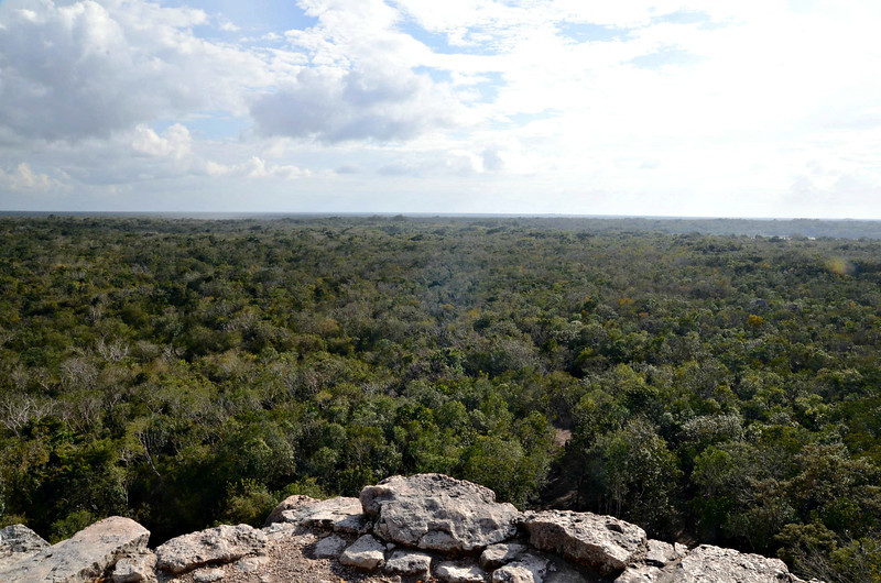 The view from the top of Nohoch Mul.  During the time of Coba, only the king was allowed to climb the pyramid.  In the distance, you can see the lagoons surrounding the city.  (Oddly, enough, the stairs are right in front of you...yes, they are that steep.)
