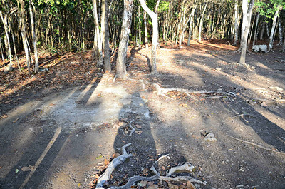 This cleared area is a portion of the original Mayan sacbe, or paved, white, stone road system.  The Mayans built many roads between their great cities, although they had no pack animals and did not use any carts.  People would travel along these roads to different cities for ceremonies and trade.  You can see a patch of the original pavement from sacbe in this photo.