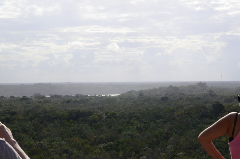 The view from the top of Nohoch Mul.  During the time of Coba, only the king was allowed to climb the pyramid.  In the distance, you can see the lagoons surrounding the city.