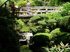 <h2>Authentic</h2> It was an authentic Japanese Garden as they made known with several signs warning me to watch my step.