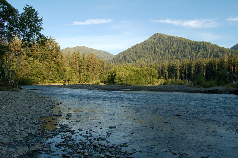 The Hoh River, Olympic National Park, WA.