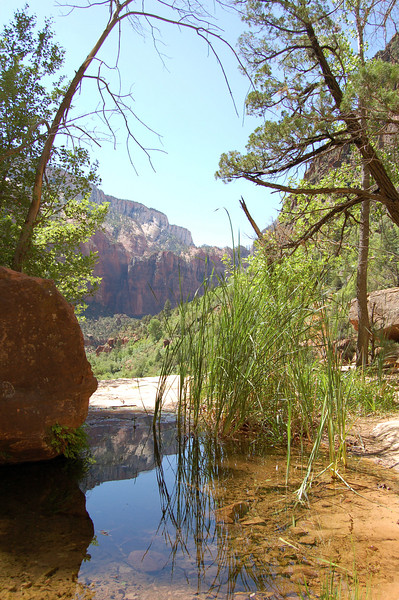 Emerald Pools, Zion National Park, UT.