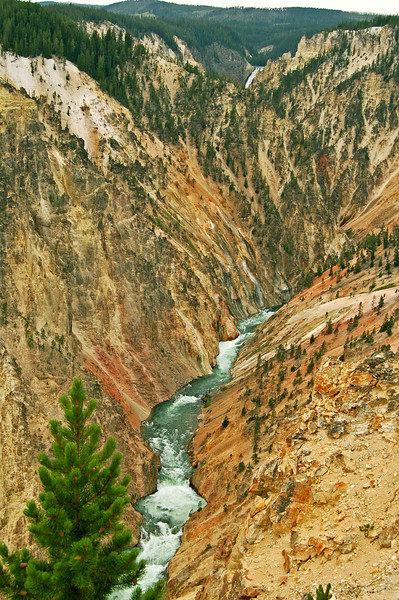 Yellowstone Gorge, Yellowstone National Park, WY.