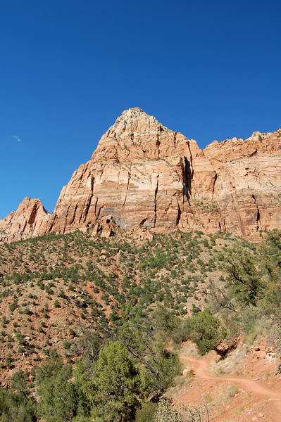 The Watchman, Zion National Park, UT.