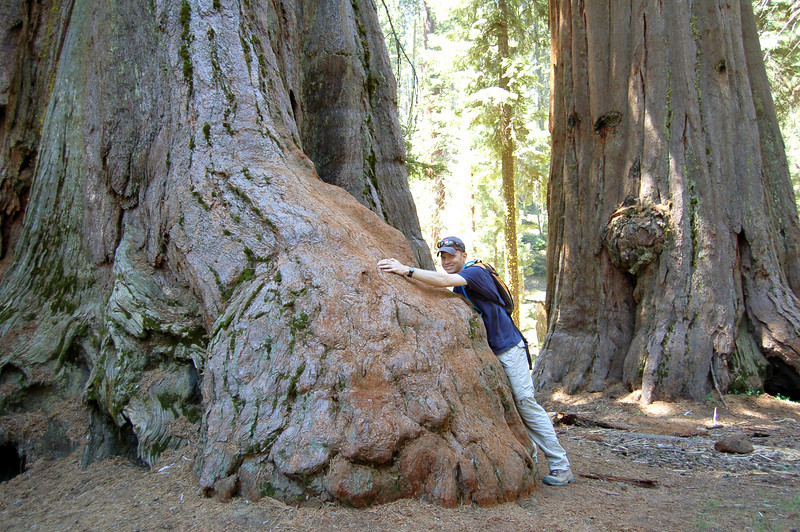Roderick next to a giant tree, Sequoia National Park, California.