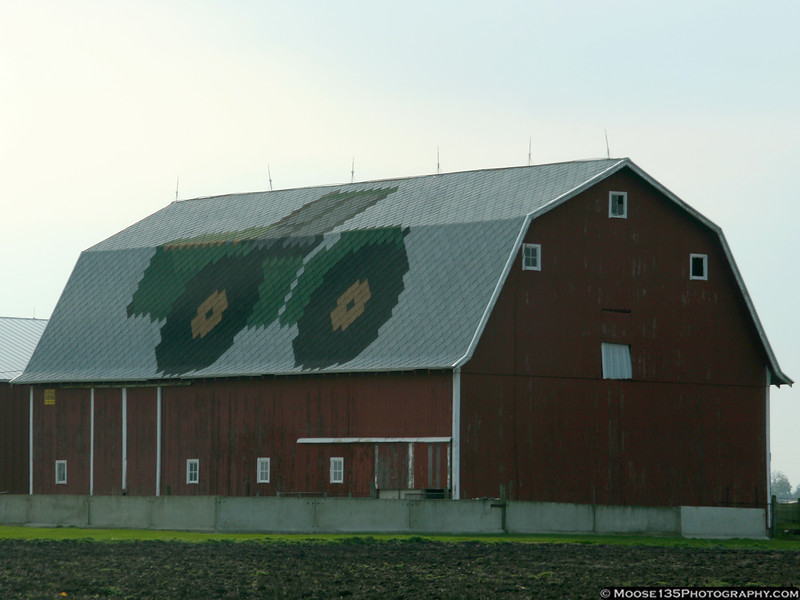 Artwork on a local barn.