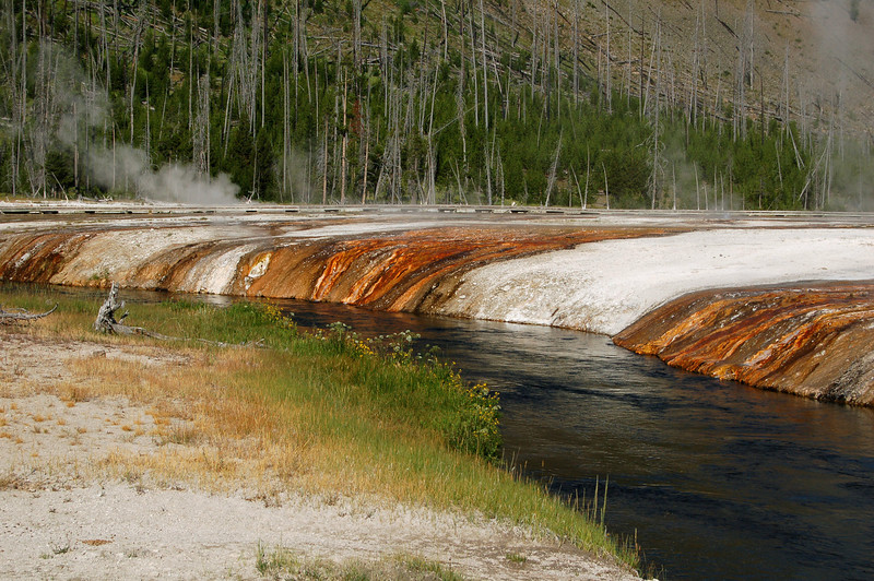 Runoff from geysers, Yellowstone National Park, WY.