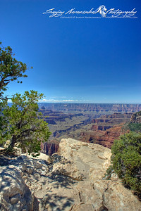 Grand Canyon North Rim, 2010