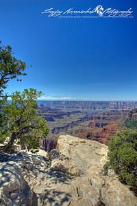 Grand Canyon North Rim, 2010