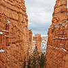 Queen's Court Trail, Bryce