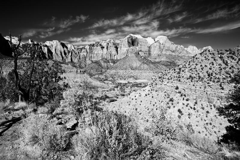 Zion Watchman Trail View
