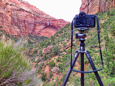 Gitzo at work. I love this tripod for travel.
