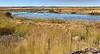 Pond in the Modoc National Wildife Refuge