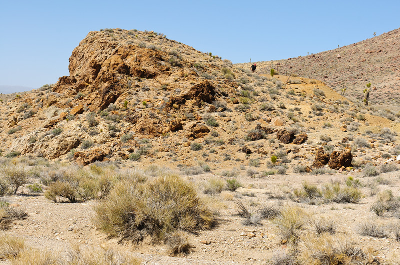 Nevada 2014-2488
