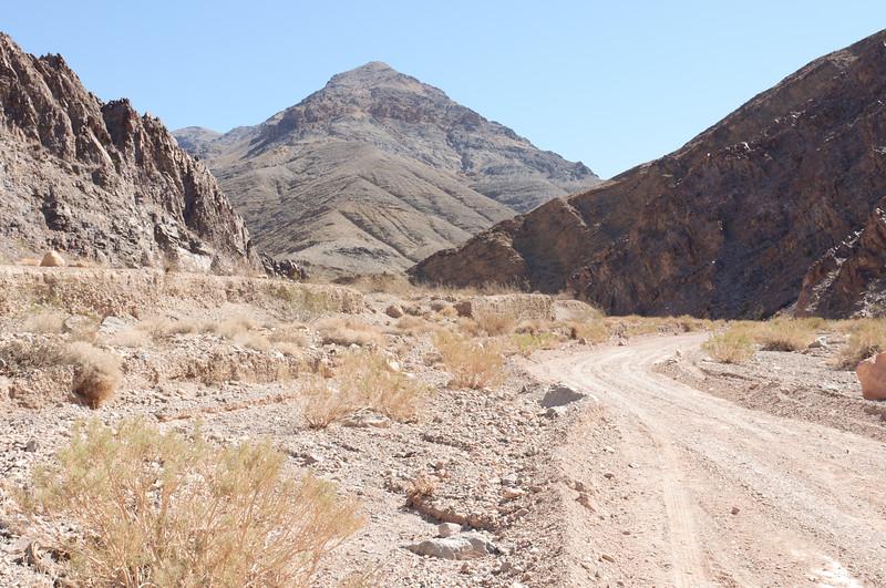 Nevada 2014-2649