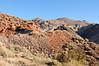 Nevada 2014-2532