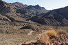 Nevada 2014-2543