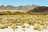 Death Valley-7225