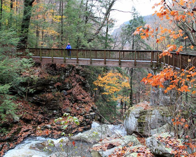 Jan near Hemlock Falls, Georgia