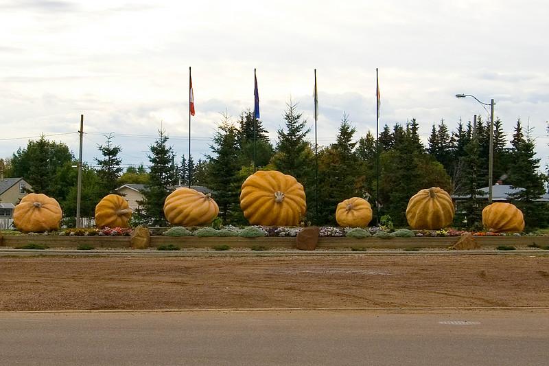 They sure like pumpkins in Smoky Lake