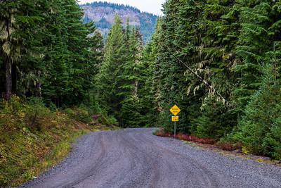 Gifford Pinchot Road Trip-2332