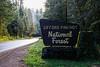 Gifford Pinchot Road Trip-2182
