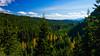 Gifford Pinchot Road Trip-2277