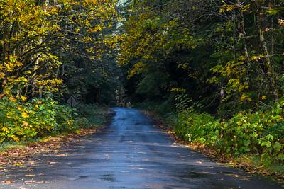 Gifford Pinchot Road Trip-2190