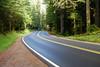 Gifford Pinchot Road Trip-2184