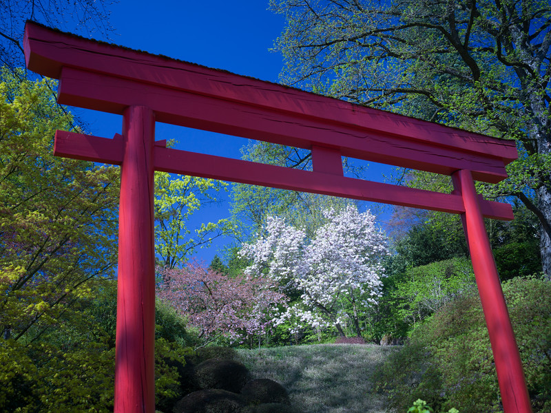 Entrance to the Japanese Garden of  Kaiserslautern, Germany