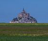 Abbey of Mont-St-Michel from across a pasture<br /> <br /> ~ Image by Martin McKenzie, all rights reserved ~<br />  © copyright digitally watermarked / filigrane numérique copyright ©
