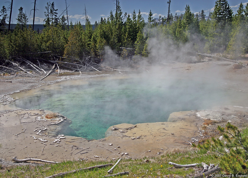 Emerald Spring (in the Norris Geyser Basin)