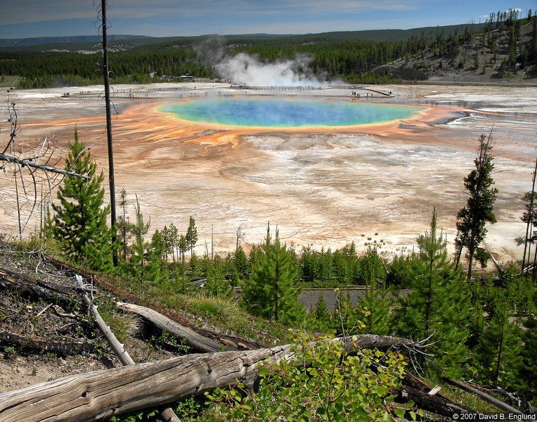 Grand Prismatic Spring (in the Midway Geyser Basin):<br /> <br /> Approximately 370 feet in diameter and 121 feet deep, Grand Prismatic Spring is Yellowstone's largest hot spring, and the third largest hot spring on Earth (New Zealand contains the two larger springs).