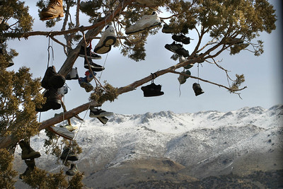 California Hwy 395 . The Shoe Tree .  March 17, 2011