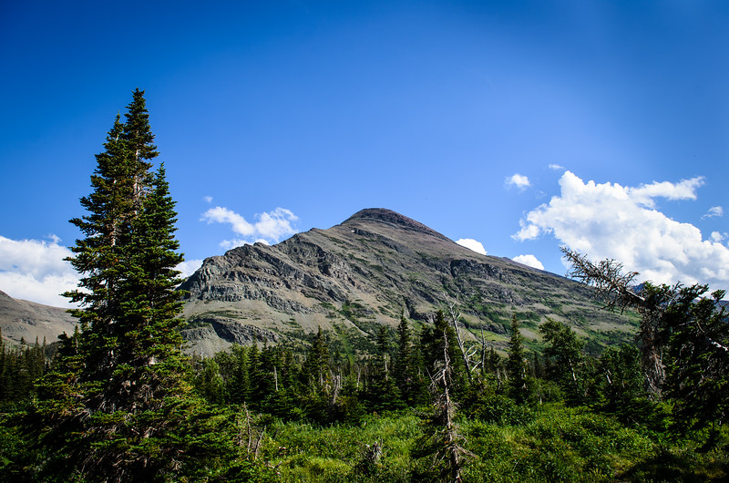 Glacier National Park | July 2013