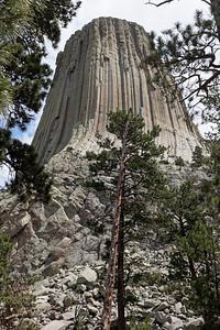 Devil's Tower, signes cultuels, marmottes