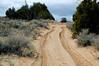 Peria Plateau-0335