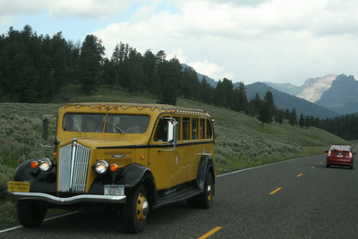 Classic Yellowstone bus