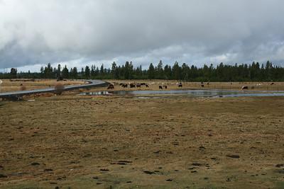 Oregon 2008