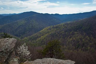 Sweeping view across the Blue Ridge Mountains near Roanoke, Virginia