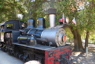 The steam-powered train.... Lucky #7!