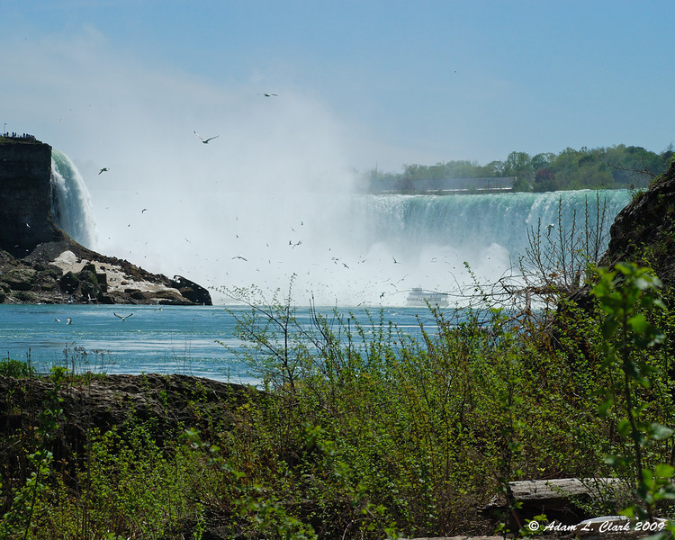 Horseshoe Falls from the dock area