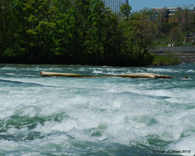 A log stuck in the water upstream of the American Falls