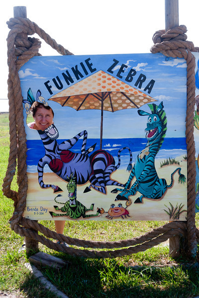 Funky Zebra, Rockport, TX, September 2011